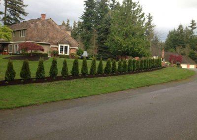 Woodinville-Landscape-Maintenance
